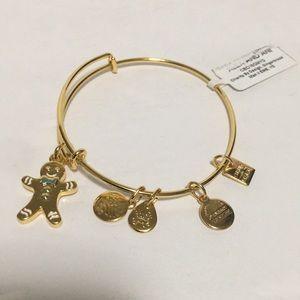 Alex and Ani bracelet NWT